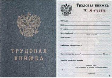 Потребуется ли трудовая книжка для оформления загранпаспорта российским гражданам